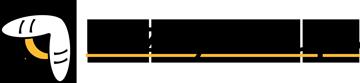 BuzzyStream logo